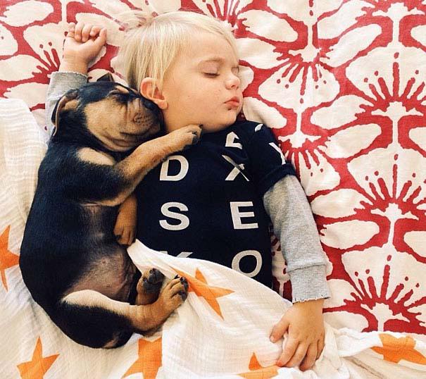 Μωρό κοιμάται με το 2 μηνών κουτάβι του κάθε μέρα (14)