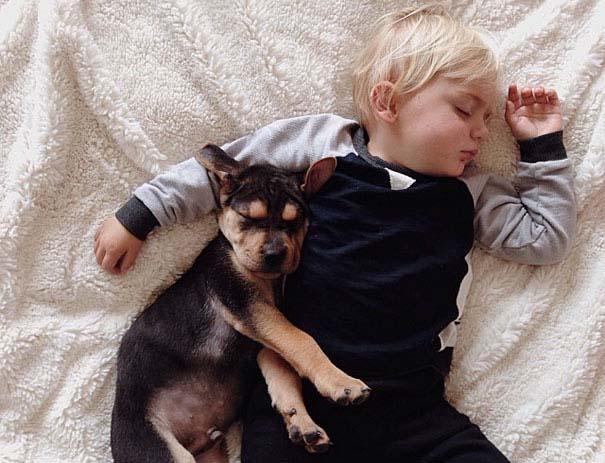 Μωρό κοιμάται με το 2 μηνών κουτάβι του κάθε μέρα (15)