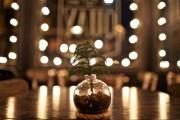 Πρωτότυποι χειροποίητοι Χριστουγεννιάτικοι στολισμοί (31)