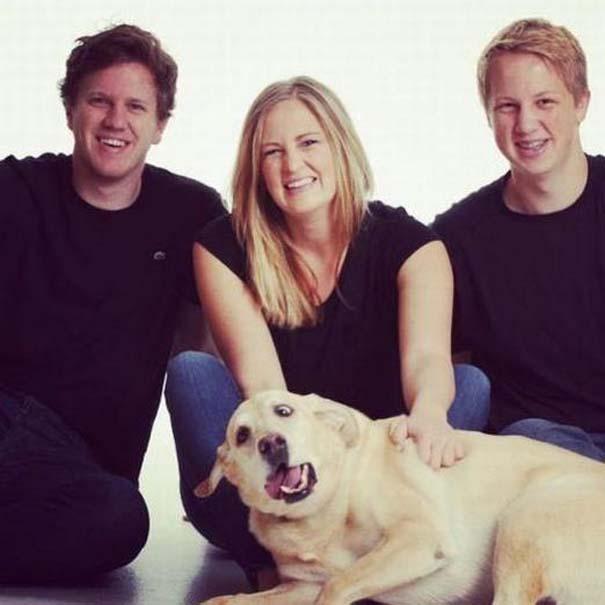 Σκύλοι που το έχουν χάσει τελείως (9)