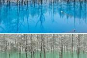 Η υπέροχη μπλε λίμνη στην Ιαπωνία που αλλάζει χρώμα (1)