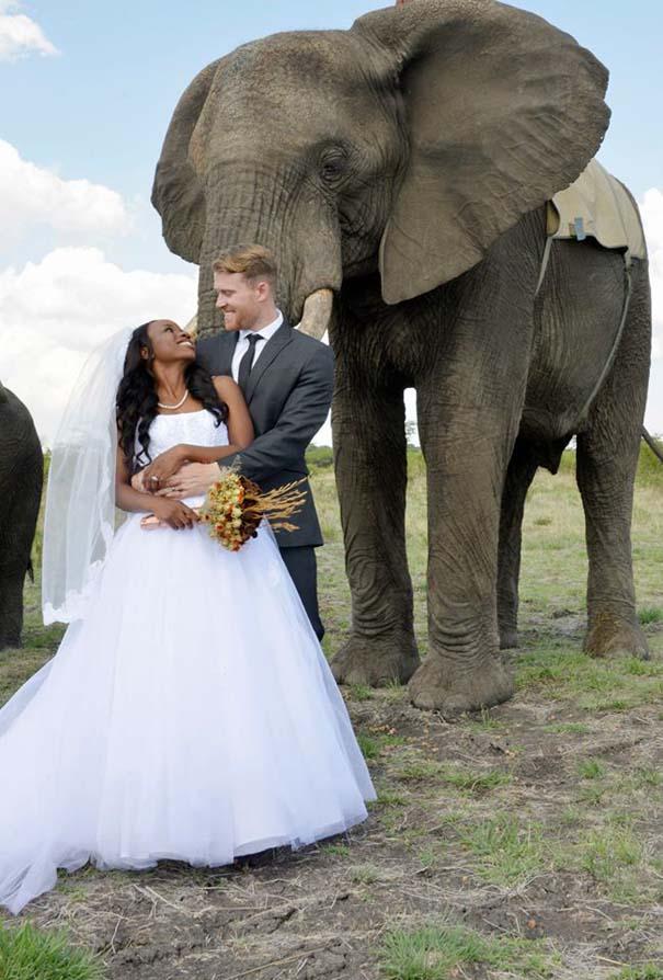 Ένας απίθανος γάμος στη Ζιμπάμπουε (12)
