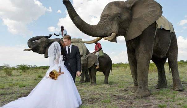 Γνωριμίες Στη Ζιμπάμπουε