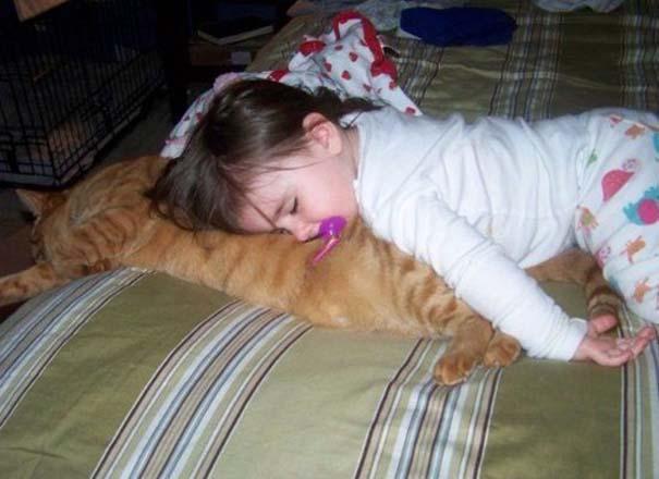 Γάτες που απλά δεν τις νοιάζει πια... (6)