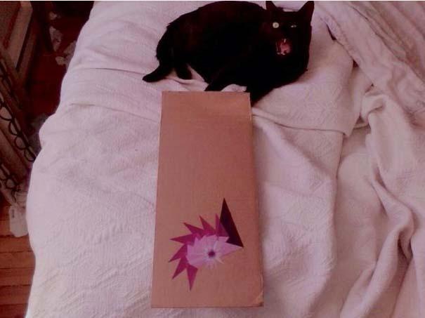 Γάτες που τα έχουν χαμένα (12)