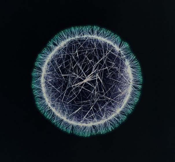 Ναρκωτικές ουσίες κάτω από το μικροσκόπιο (8)