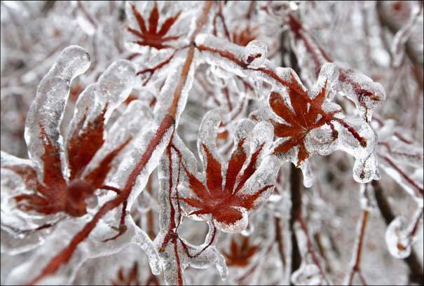 Εντυπωσιακές εικόνες που άφησε πίσω της μια παγοθύελλα στον Καναδά (1)