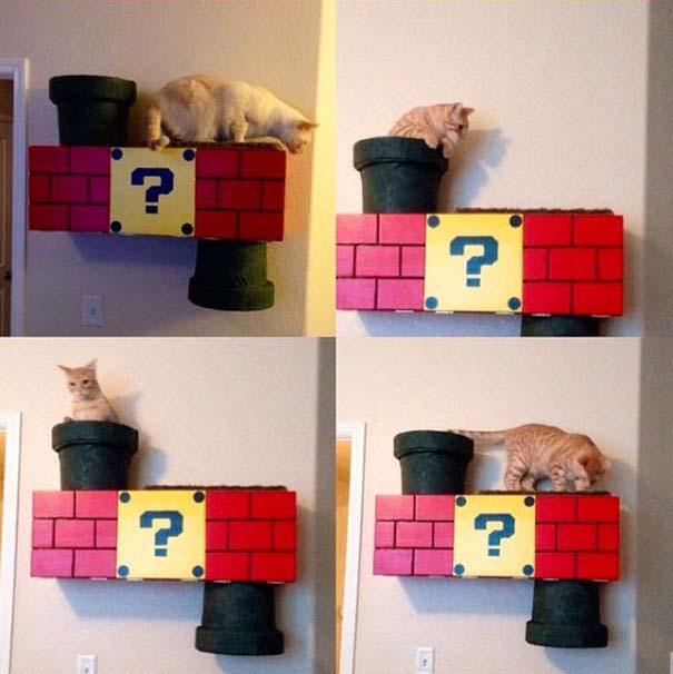 Ράφι για γάτα εμπνευσμένο από τον Super Mario (8)