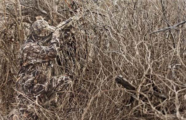 Η τέχνη του καμουφλάζ (2)