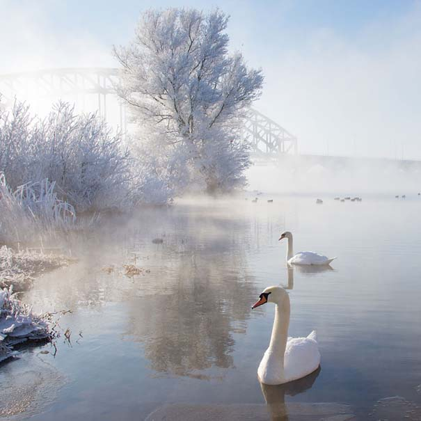 Χειμωνιάτικα τοπία (12)