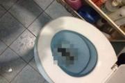Ένας αναπάντεχος επισκέπτης στην τουαλέτα (1)