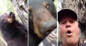 Ίσως ο πιο ψύχραιμος κυνηγός στον κόσμο (Video)