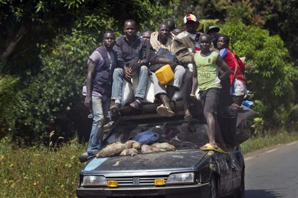 Μόνο στην Αφρική (6)