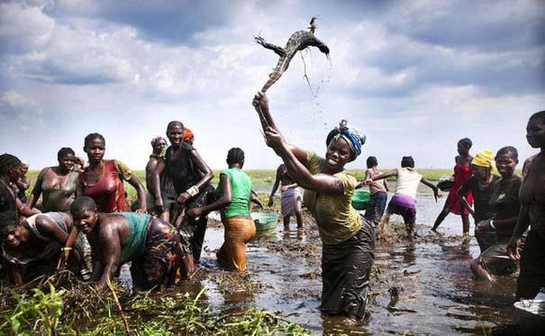 Μόνο στην Αφρική (9)