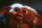 Όλα τα λάθη της ταινίας «Gremlins» σε 8 λεπτά