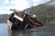 Πλοίο γέρνει σκόπιμα για να ξεφορτώσει τεράστιο φορτίο ξυλείας