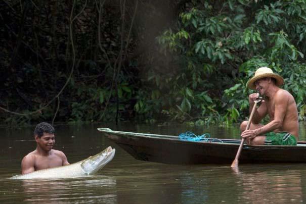 Ψάρεμα στον Αμαζόνιο (5)