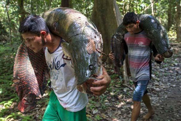Ψάρεμα στον Αμαζόνιο (12)