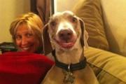 Όταν τα ζώα κάνουν αστείες γκριμάτσες