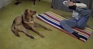 Σκύλος κάνει yoga με την ιδιοκτήτρια του (Video)