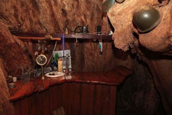 Στο εσωτερικό ενός ζωντανού δέντρου 6.000 ετών (4)