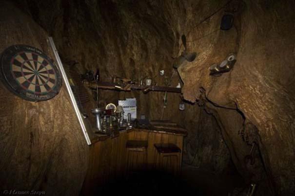 Στο εσωτερικό ενός ζωντανού δέντρου 6.000 ετών (6)