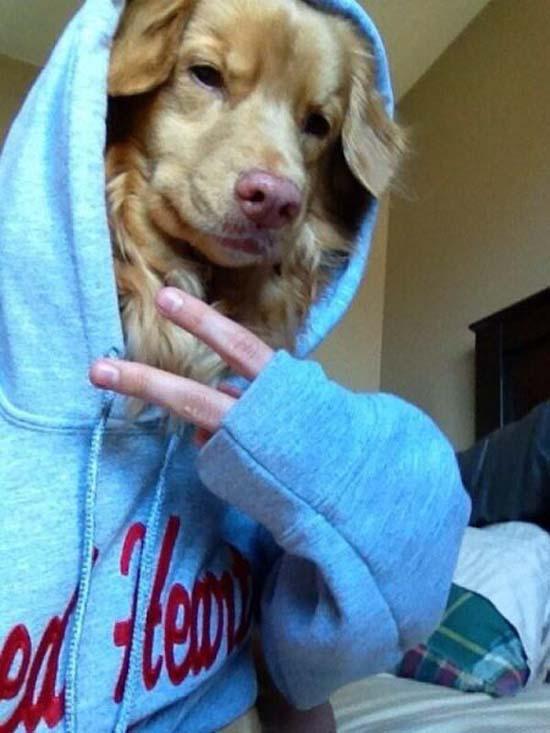 Selfie Olympics: Οι πιο τρελές και αστείες selfies (16)