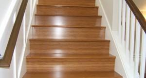 Τσουλώντας στις σκάλες (Video)