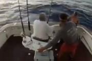 Βασιλική ζαργάνα πήδηξε σε σκάφος και ο ψαράς πήδηξε στη θάλασσα για να σωθεί