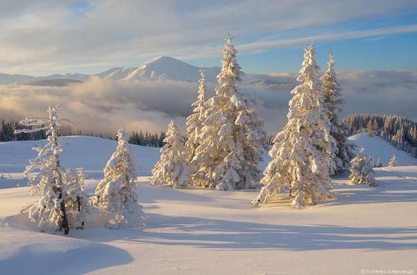 Χειμώνας στα Καρπάθια Όρη (11)