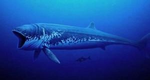 Τα 10 μεγαλύτερα πλάσματα όλων των εποχών (Video)