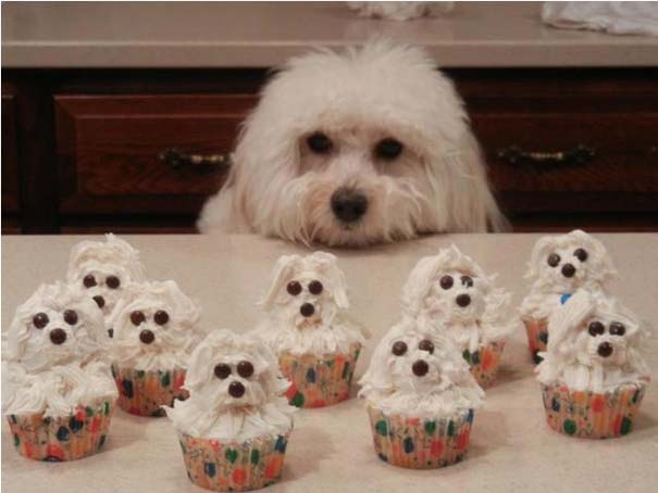Cupcakes που θα λυπόσουν να φας (12)