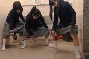 Εν τω μεταξύ, στα σχολεία της Ιαπωνίας... (6)