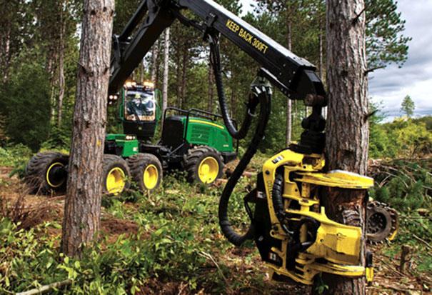 Ο τρομακτικός καταστροφέας δασών (3)