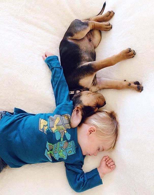 Νήπιο συνεχίζει να κοιμάται με το κουτάβι του κάθε μέρα (6)
