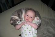 Όταν οι γάτες κάνουν babysitting σε μωρά