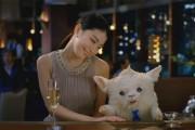 Οι πιο παράξενες κι αλλόκοτες Γιαπωνέζικες διαφημίσεις