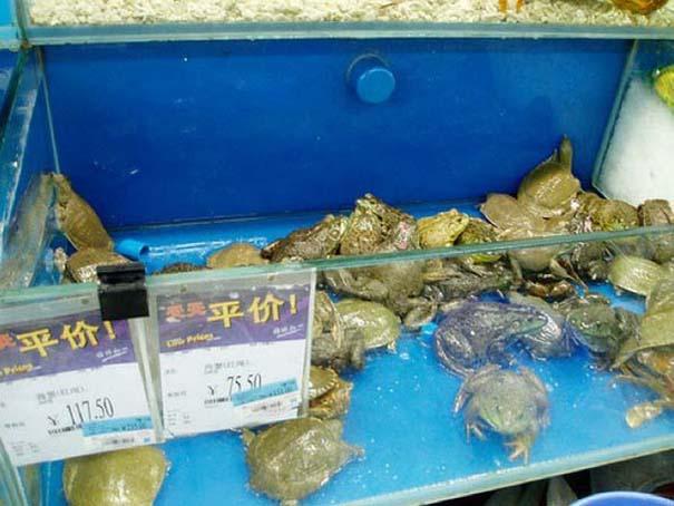 Περίεργα προϊόντα που θα βρεις μόνο σε ένα Κινέζικο σούπερ μάρκετ (5)