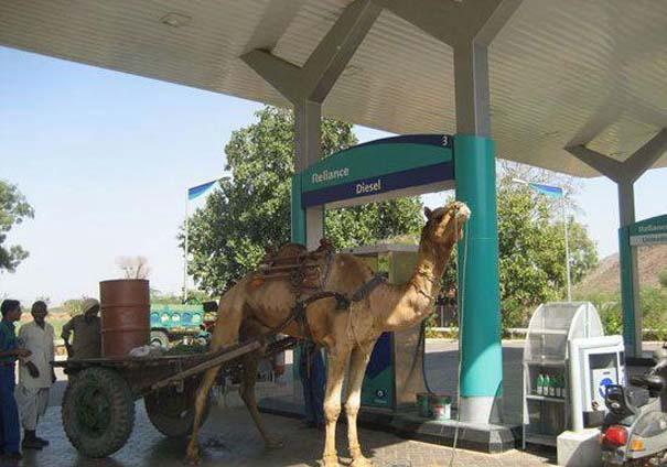 Περίεργες και ξεκαρδιστικές στιγμές σε βενζινάδικα (1)