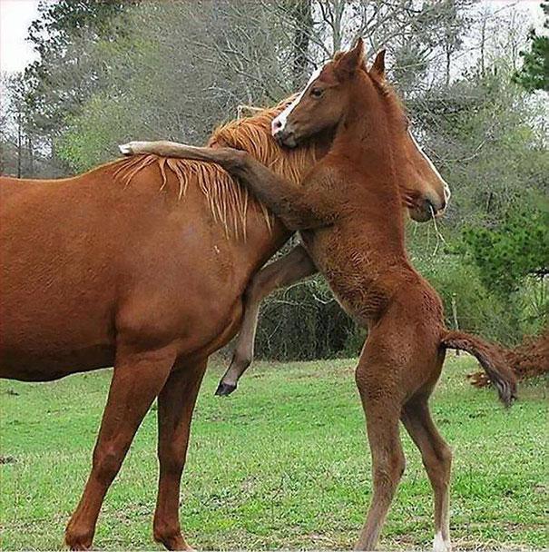 Μια μεγάλη αγκαλιά για τη μαμά | Φωτογραφία της ημέρας