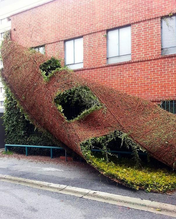 Όταν ένα κτήριο «αλλάζει δέρμα» σαν το φίδι | Φωτογραφία της ημέρας