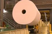 Πώς φτιάχνεται το χαρτί υγείας