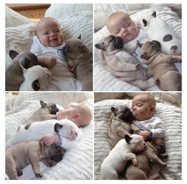 Φωτογραφίες που αποδεικνύουν πως οι σκύλοι είναι οι καλύτεροι φίλοι των παιδιών (1)