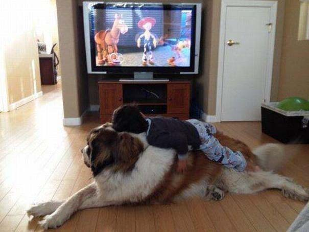 Φωτογραφίες που αποδεικνύουν πως οι σκύλοι είναι οι καλύτεροι φίλοι των παιδιών (6)