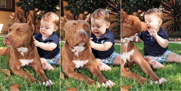 Φωτογραφίες που αποδεικνύουν πως οι σκύλοι είναι οι καλύτεροι φίλοι των παιδιών (9)