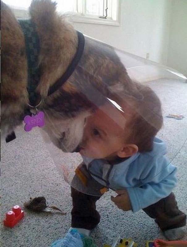 Φωτογραφίες που αποδεικνύουν πως οι σκύλοι είναι οι καλύτεροι φίλοι των παιδιών (14)