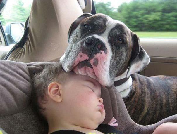 Φωτογραφίες που αποδεικνύουν πως οι σκύλοι είναι οι καλύτεροι φίλοι των παιδιών (20)