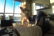 Ο χειρότερος σκύλος στο πιάσιμο της μπάλας