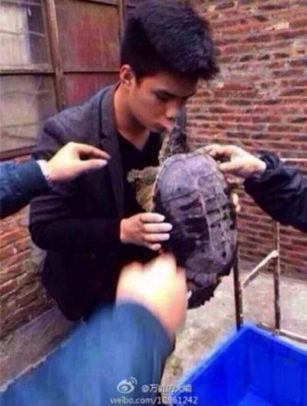 Αυτός ο τύπος ανακάλυψε γιατί είναι κακή ιδέα να φιλήσεις μια χελώνα (3)