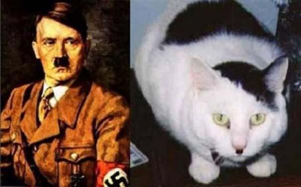 Διάσημοι που μοιάζουν με περίεργα πλάσματα (6)